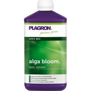 ALGABLOOM