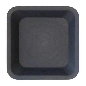 sotto-vega-nero