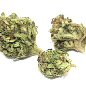 fiori di campo cannabis